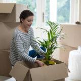 引越しに伴う植木鉢や盆栽、植木、庭木の梱包の方法