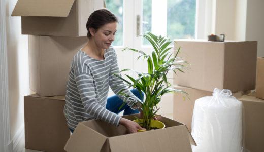 引越しに伴う植木鉢や盆栽、植木、庭木の梱包の方法と業者の探し方