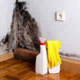 【黒カビの除去方法のコツ】守るべき注意点とカビ取り洗剤に頼らない撃退法