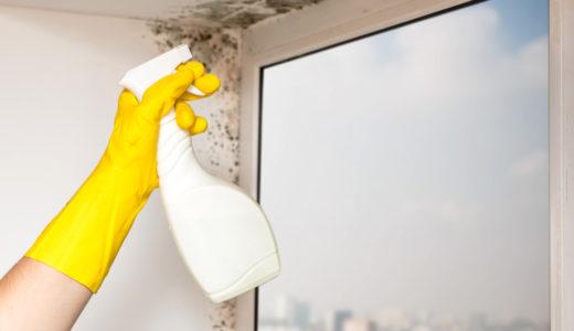 サッシのカビ!使う洗剤は中性洗剤が良い!片栗粉を使った方法と窓の結露対策8つ!簡単な対策グッズも大公開します!